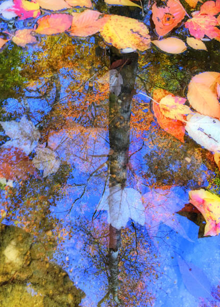 Autumn Watermark|Fine Art Photography by Todd Breitling|Landscape Photography|Todd Breitling Art|
