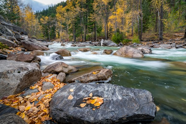 Cayoosh Creek Autumn Colours