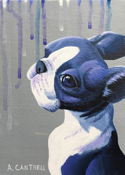 Pup Study 11 original fine art acrylic painting