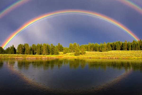 1592 Rainbow Gathering