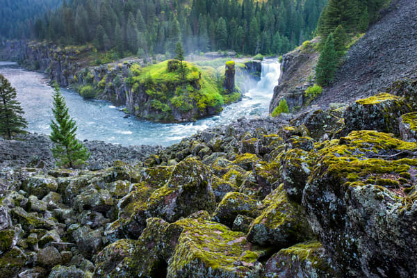 1664 Lower Mesa Falls and Lichen