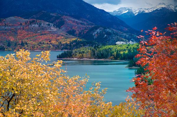 Palasiades Fall Photography Art | Swan Valley Photo