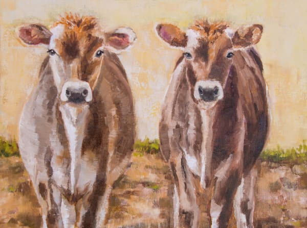 jersey, cows, originals