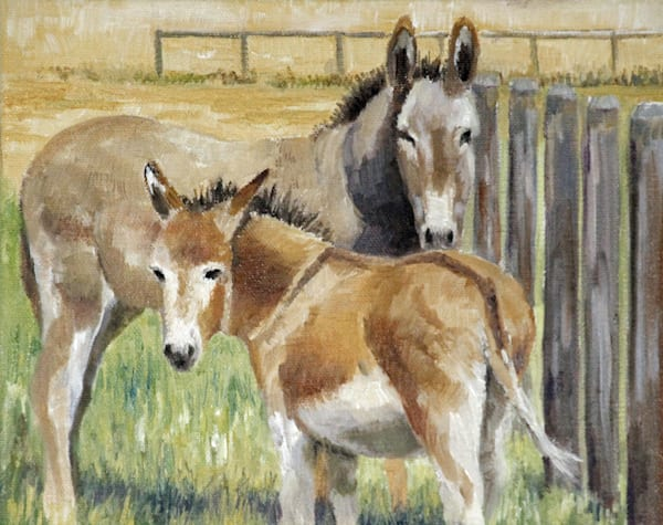 burrows, burros, originals,
