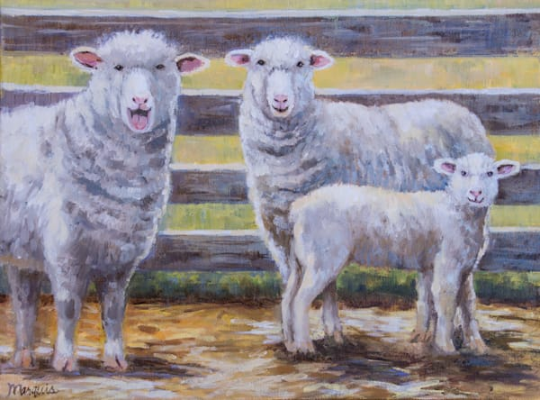 originals, spring barnyard, sheep