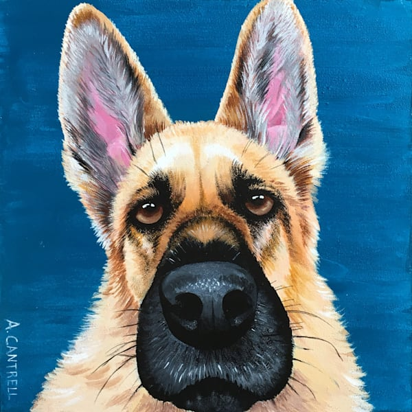 Pup Study 9 - original fine art painting by Allison Cantrell