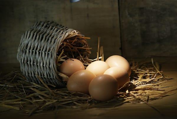 Eggs in a Basket, Canvas Prints, Big Wall Art