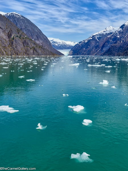 Glaciers Journey