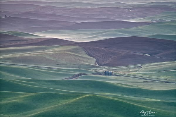 The Glow of Palouse