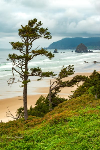 Haystack Rock (1810137LNND8) Photograph for Sale Sale as Fine Art Print