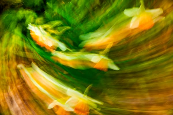Natural Motion # 45 - Abstract Art Photographs for sale great for interior design. Ron Pickering Photography