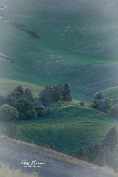 The Palouse Photography Art | Images2Impact
