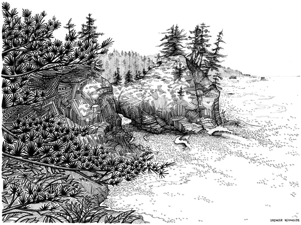Thunder Dreaming Pen and Ink by Spencer Reynolds