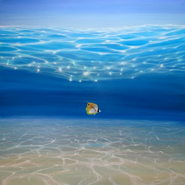 Fine Art Prints   Seascapes and Fish