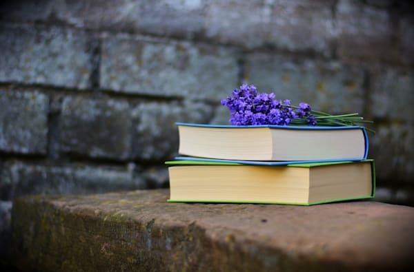 books-2420232