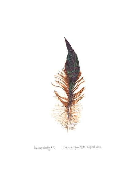 Feather Study #9 Art | Digital Arts Studio / Fine Art Marketplace