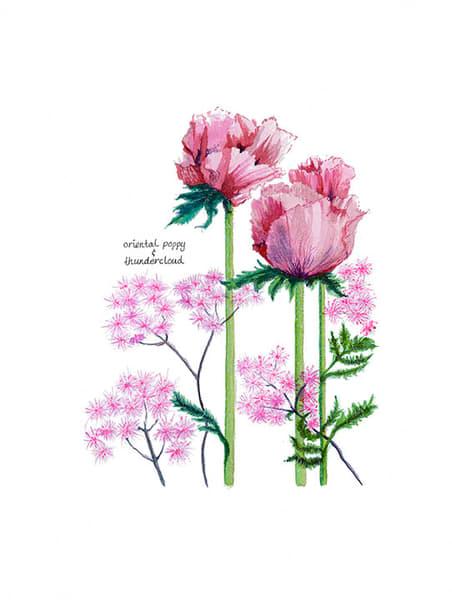 Oriental Poppies Art | Digital Arts Studio / Fine Art Marketplace