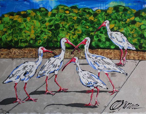 """Urban Ibis""  60 x 48 . $2,400"