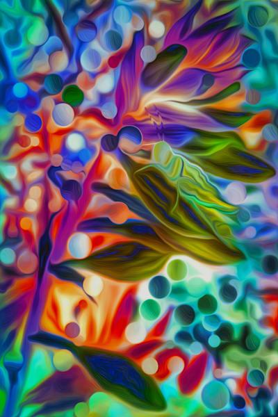 jiminy fractles