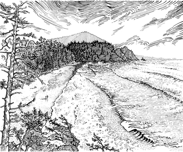 Short Sands Pen and Ink by Spencer Reynolds