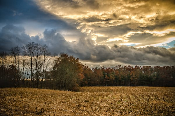 Four Corners Road Cornfield and dramatic sky