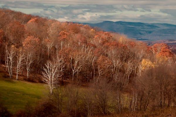 Winchell Mtn. Catskill View
