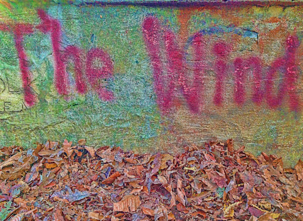 The Wind|Fine Art Photography by Todd Breitling|Graffiti and Street Photography|Todd Breitling Art|