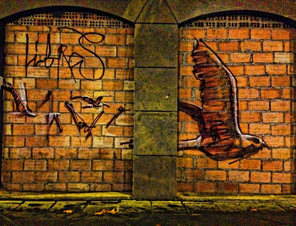 Libras In Flight|Fine Art Photography by Todd Breitling|Graffiti and Street Photography|Todd Breitling Art
