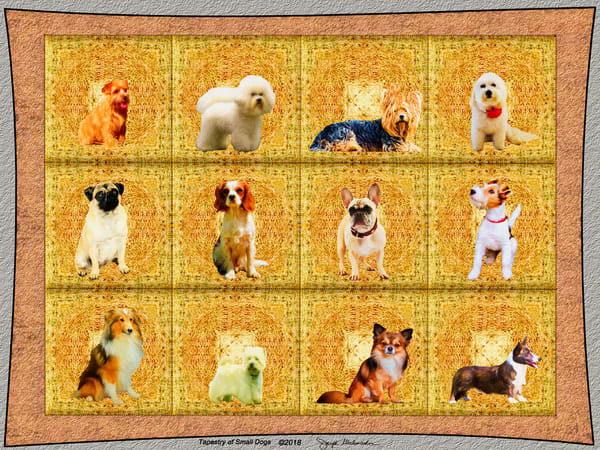Dog Art On Canvas - The Gallery Wrap Store