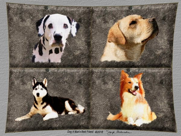Dog Art Canvas Print - The Gallery Wrap Store