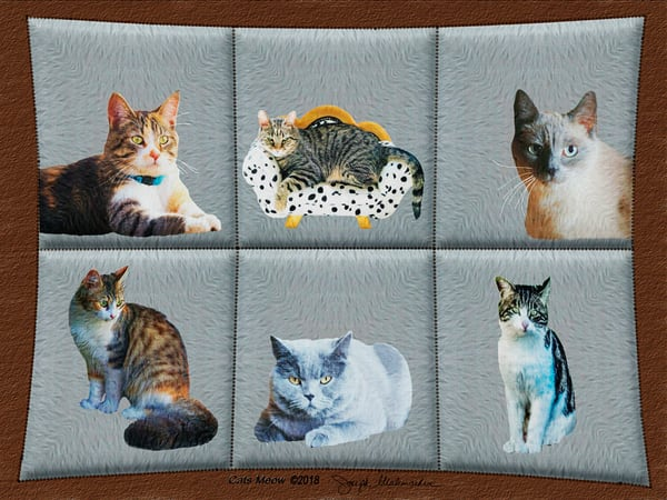 Cat Art Print - The Gallery Wrap Store