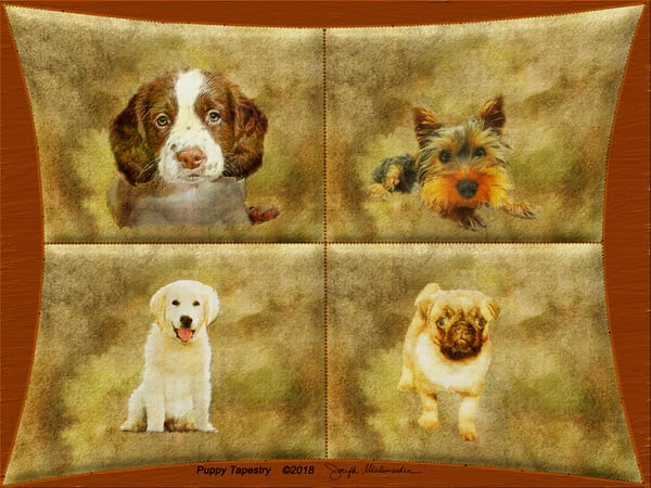 Dog Art - The Gallery Wrap Store
