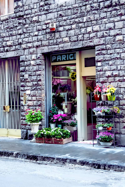 Art photography of Italy, DSC_5977  Flower Shop Florence, Italy