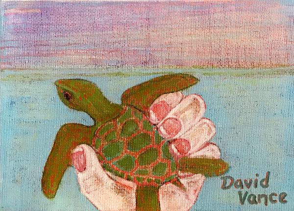 Turtle Baby Art | DavidPVance Prints