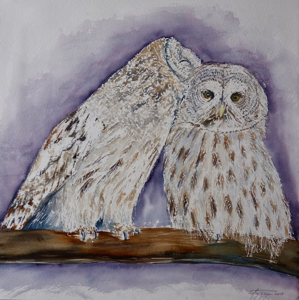 Great Grey Owls: Lovers
