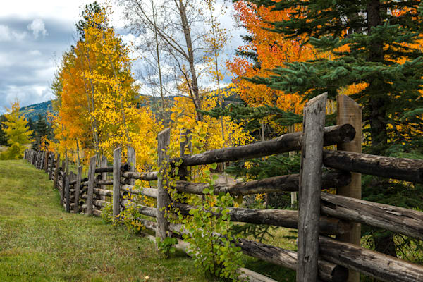 Fence In Autumn Photography Art by otoolephoto