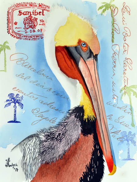 Paintings of tropical birds and plants, high resolution art, sanibel, south florida