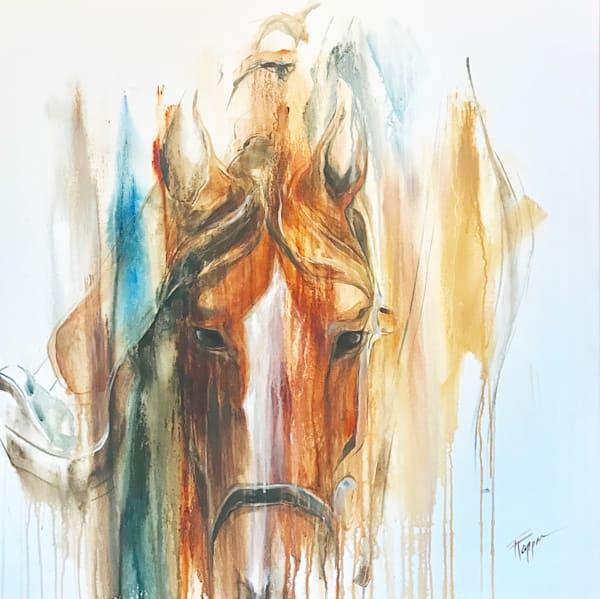 Hondo | Equine Instincts Studio