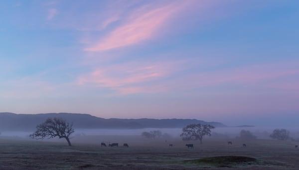 Santa Ynez sunrise 2