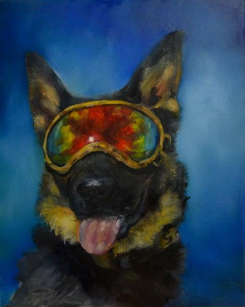 Police Service Dog K9 Rony