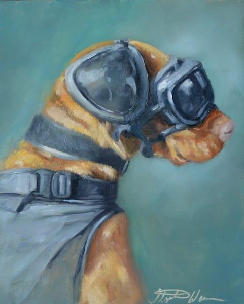 U.S. Coast Guard Explosive Detection Dog Feco