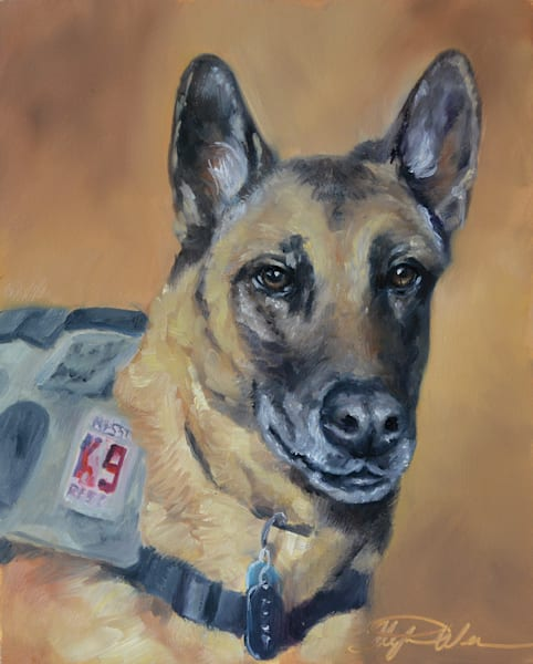 Contract Working Dog Diego Patrol Explosives Detection Dog