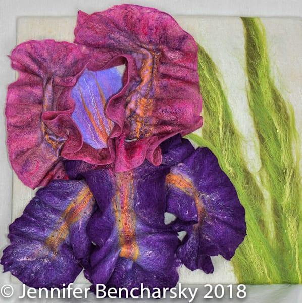 Bearded Iris Art | FeltinArt