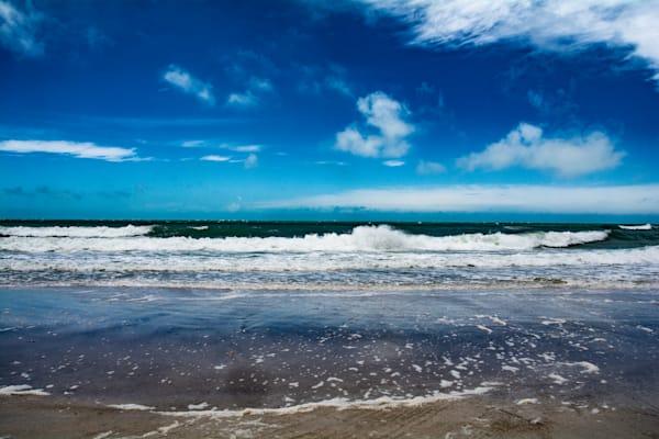Gulf View Art   Artist David Wilson