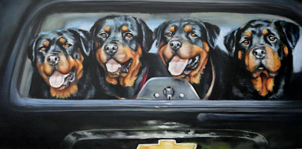 Four Rottweilers In A Truck