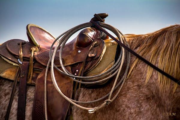 0087 Saddle