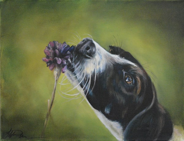 Dog Smelling the Flowers