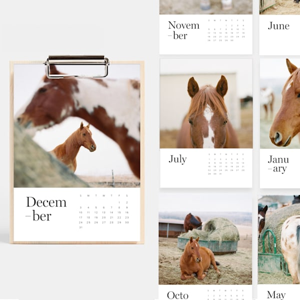 HORSES FINE ART PHOTOGRAPHY CALENDAR
