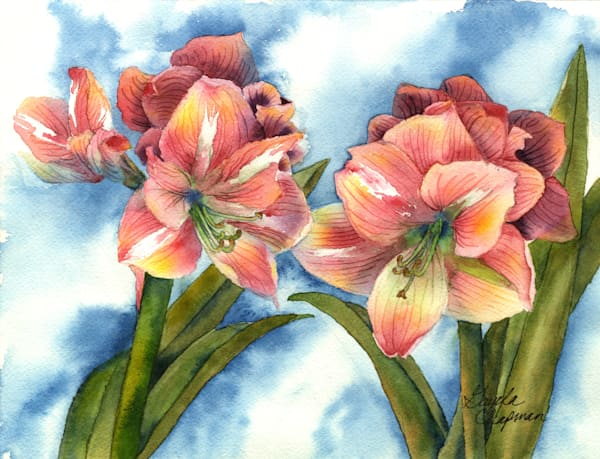 Pink Amaryllis art by  Gayela's Premiere Watercolor|Main Store