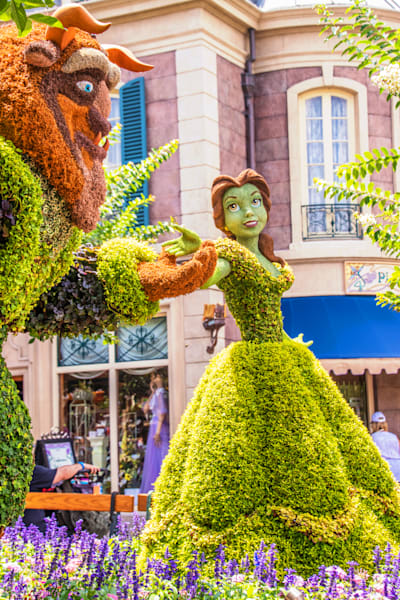 Topiary Beauty and the Beast 1 - Epcot F&G Gallery | William Drew
